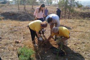 reforestacion-personas-mayores