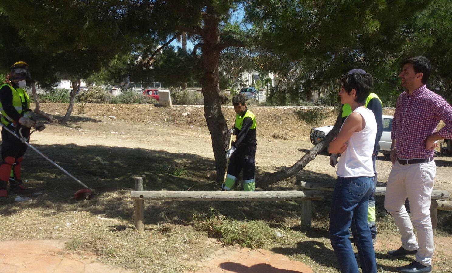 Plan de choque para el mantenimiento y recuperaci n de los for Mantenimiento parques y jardines