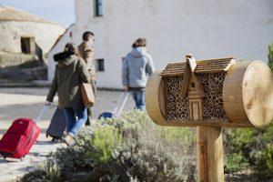 Bee&Bee